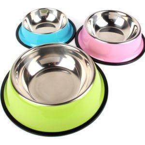 Dog Bowls and Feeding